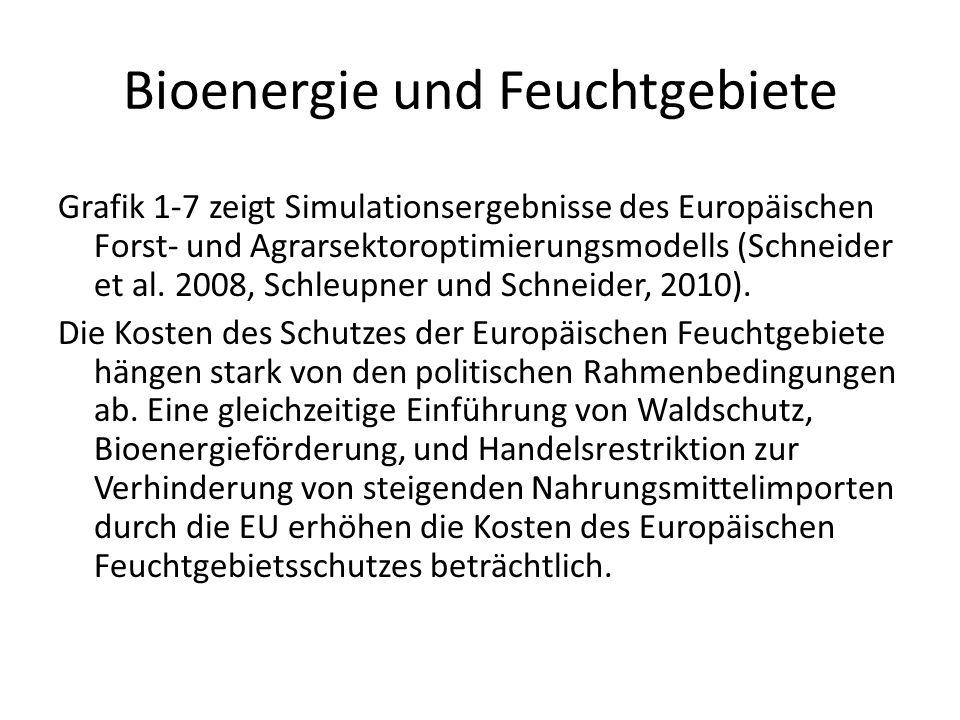 Bioenergie und Feuchtgebiete