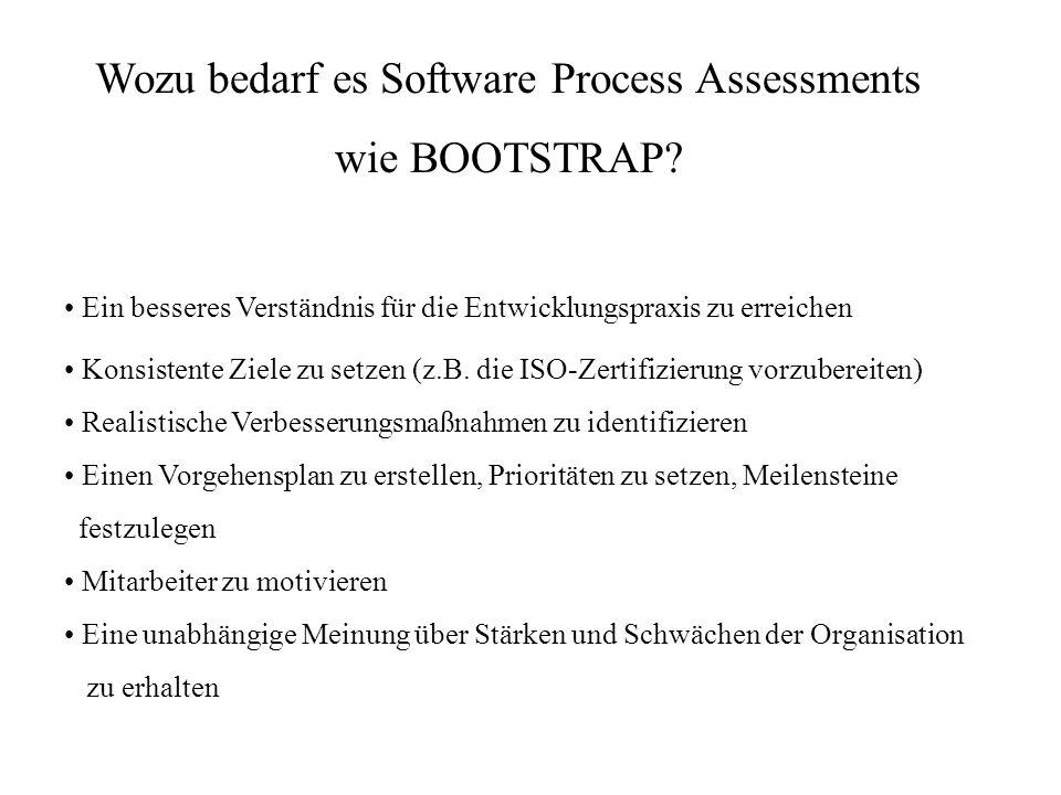 Wozu bedarf es Software Process Assessments