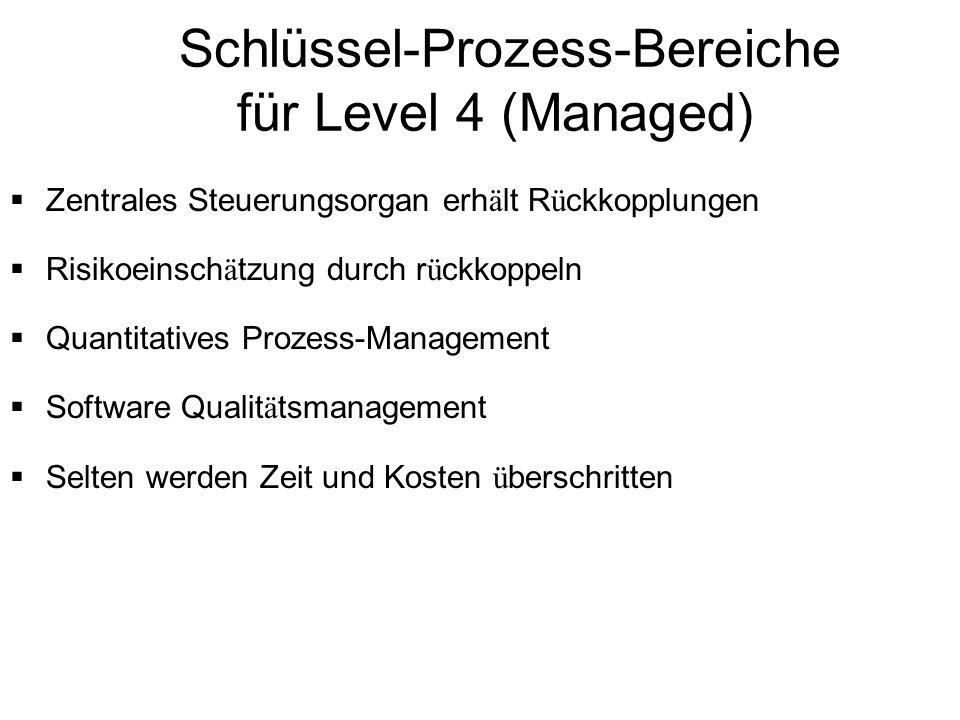 Schlüssel-Prozess-Bereiche