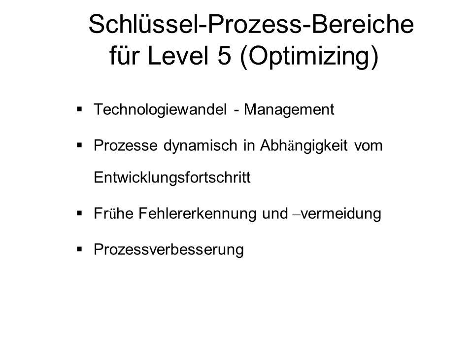 Schlüssel-Prozess-Bereiche für Level 5 (Optimizing)