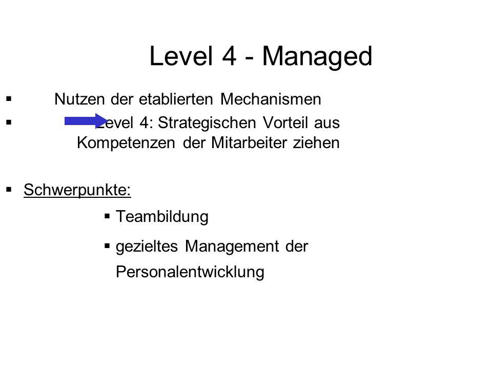 Level 4 - Managed Nutzen der etablierten Mechanismen