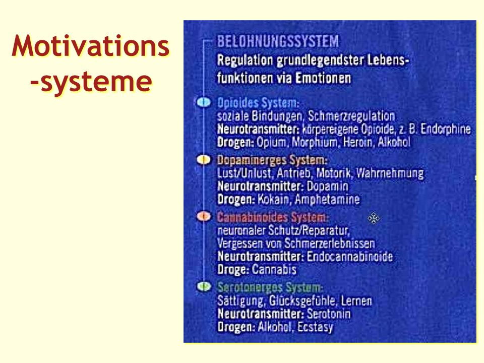 Motivations -systeme