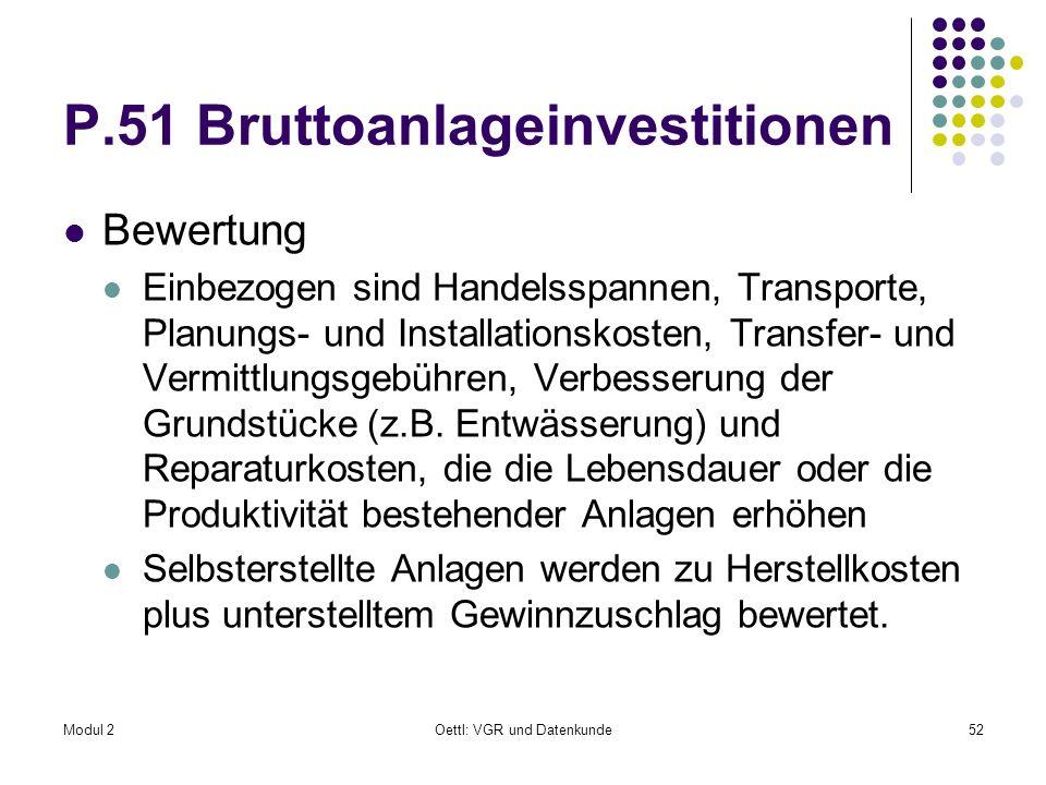 P.51 Bruttoanlageinvestitionen