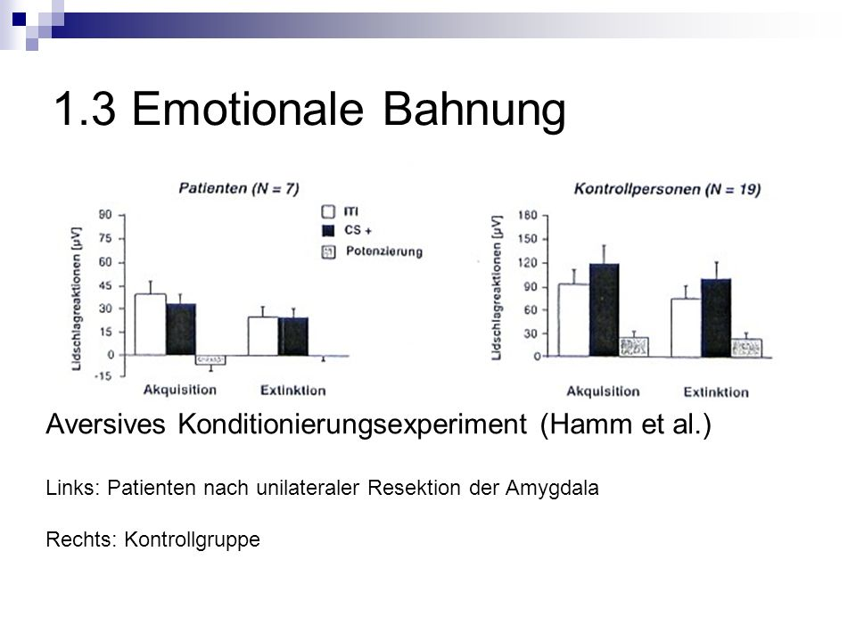 1.3 Emotionale Bahnung Aversives Konditionierungsexperiment (Hamm et al.) Links: Patienten nach unilateraler Resektion der Amygdala.