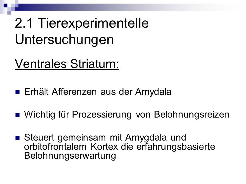 2.1 Tierexperimentelle Untersuchungen