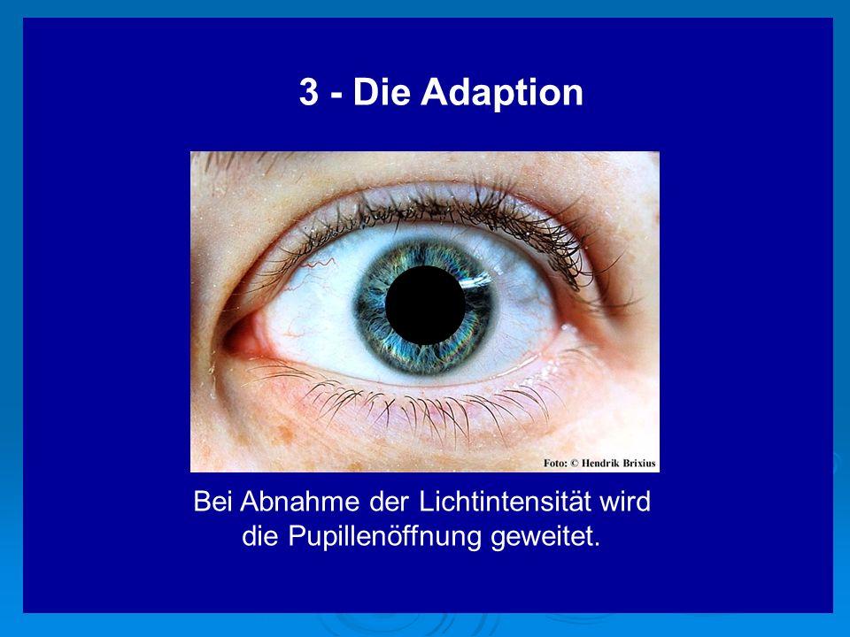 Bei Abnahme der Lichtintensität wird die Pupillenöffnung geweitet.