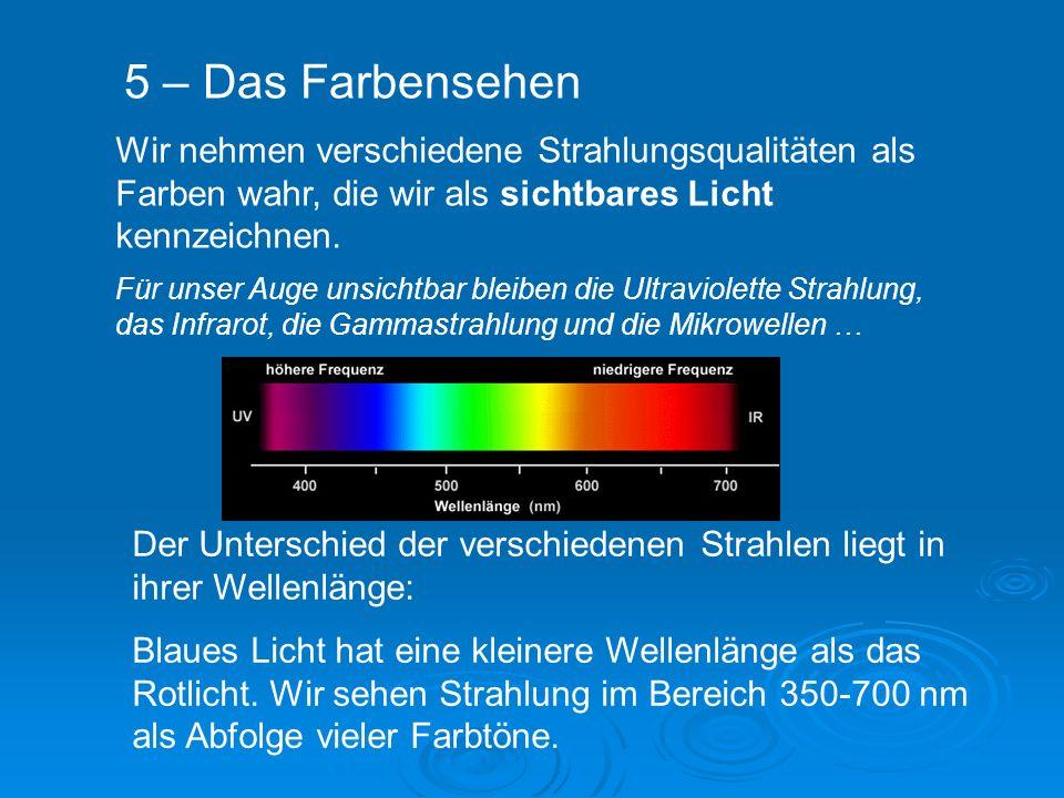 5 – Das Farbensehen Wir nehmen verschiedene Strahlungsqualitäten als Farben wahr, die wir als sichtbares Licht kennzeichnen.