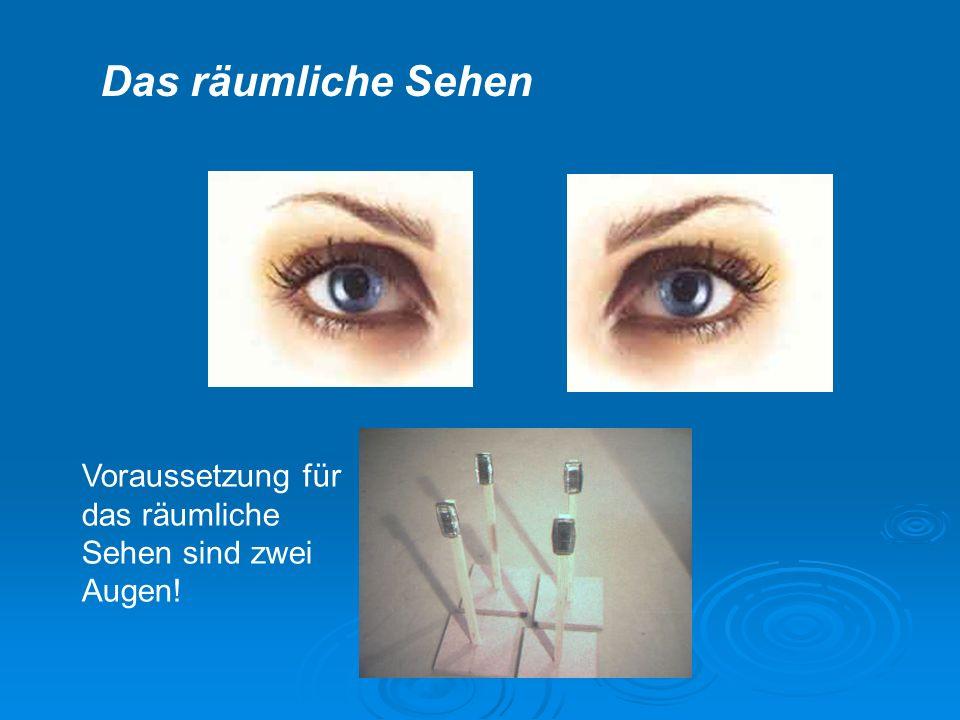 Das räumliche Sehen Voraussetzung für das räumliche Sehen sind zwei Augen!