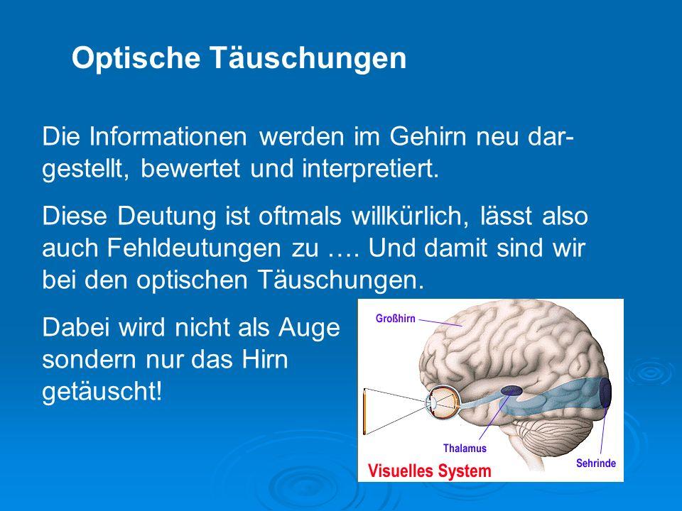 Optische Täuschungen Die Informationen werden im Gehirn neu dar-gestellt, bewertet und interpretiert.