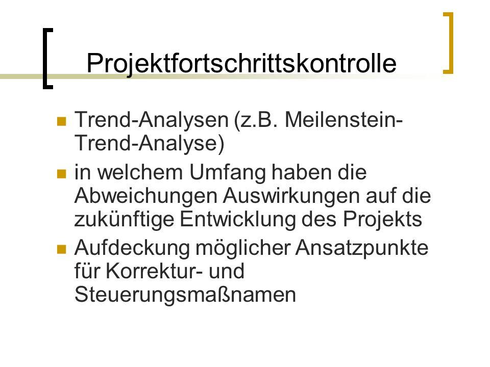 Projektfortschrittskontrolle
