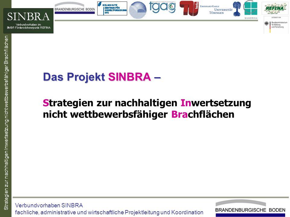 Das Projekt SINBRA – Strategien zur nachhaltigen Inwertsetzung nicht wettbewerbsfähiger Brachflächen