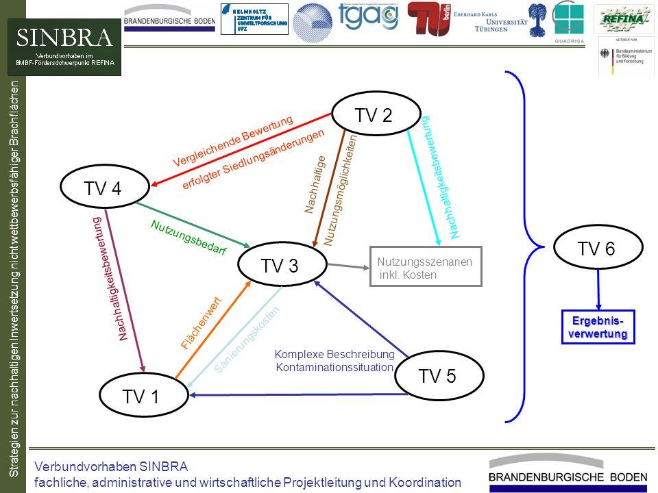 TV 2 TV 4 TV 6 TV 3 TV 5 TV 1 Verbundvorhaben SINBRA