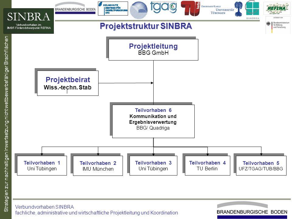 Projektstruktur SINBRA