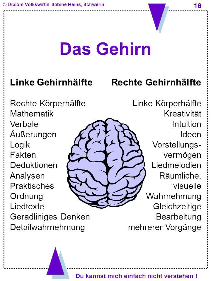 Das Gehirn Linke Gehirnhälfte Rechte Gehirnhälfte Rechte Körperhälfte