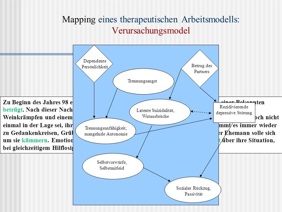 Mapping eines therapeutischen Arbeitsmodells: Verursachungsmodel