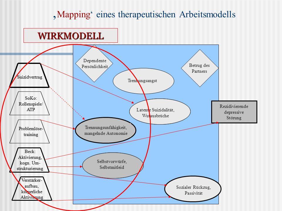'Mapping' eines therapeutischen Arbeitsmodells