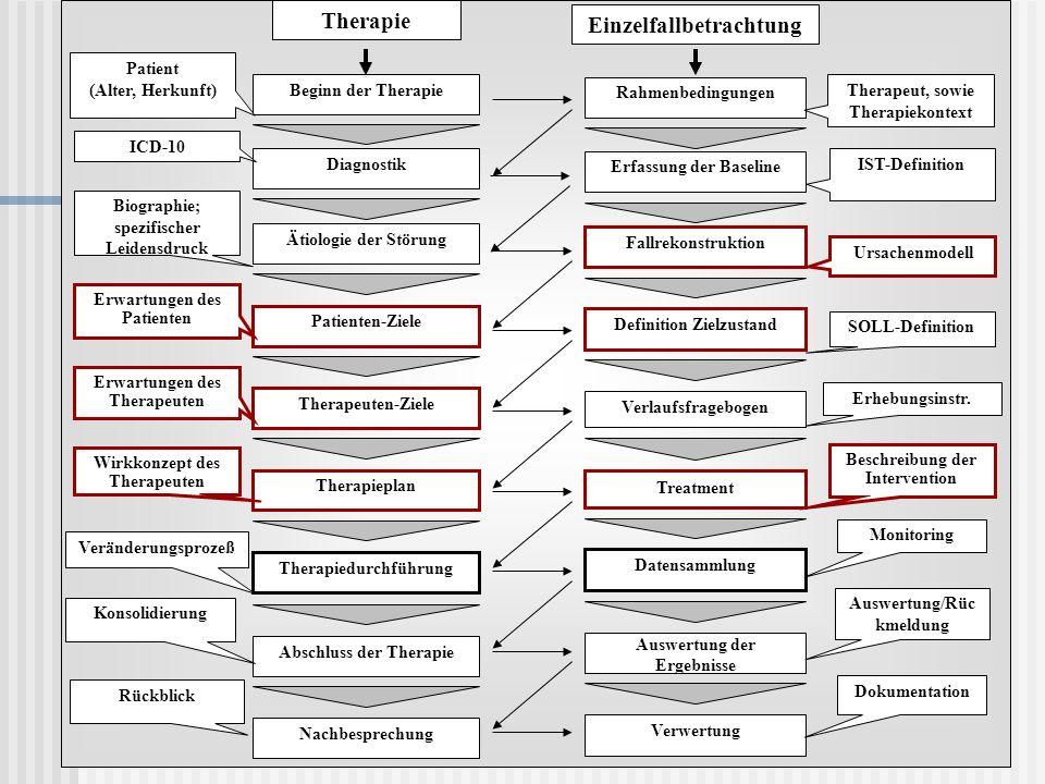 Therapie Einzelfallbetrachtung. Patient. (Alter, Herkunft) Beginn der Therapie. Rahmenbedingungen.