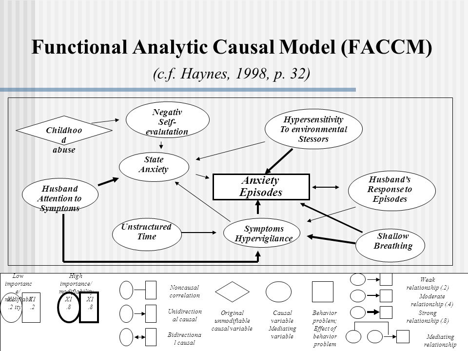 Functional Analytic Causal Model (FACCM) (c.f. Haynes, 1998, p. 32)