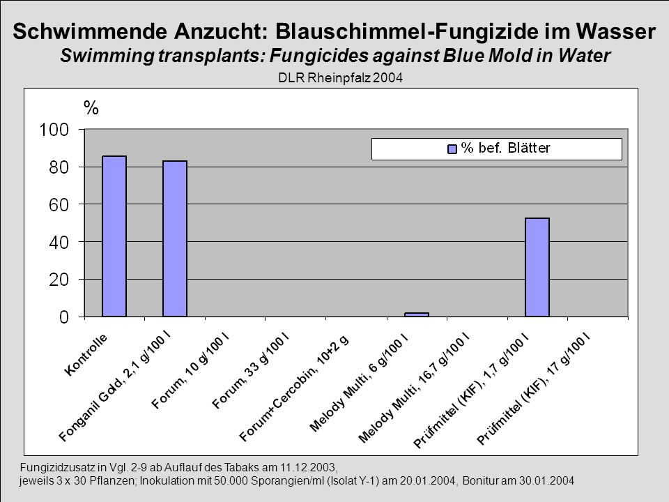 Schwimmende Anzucht: Blauschimmel-Fungizide im Wasser Swimming transplants: Fungicides against Blue Mold in Water