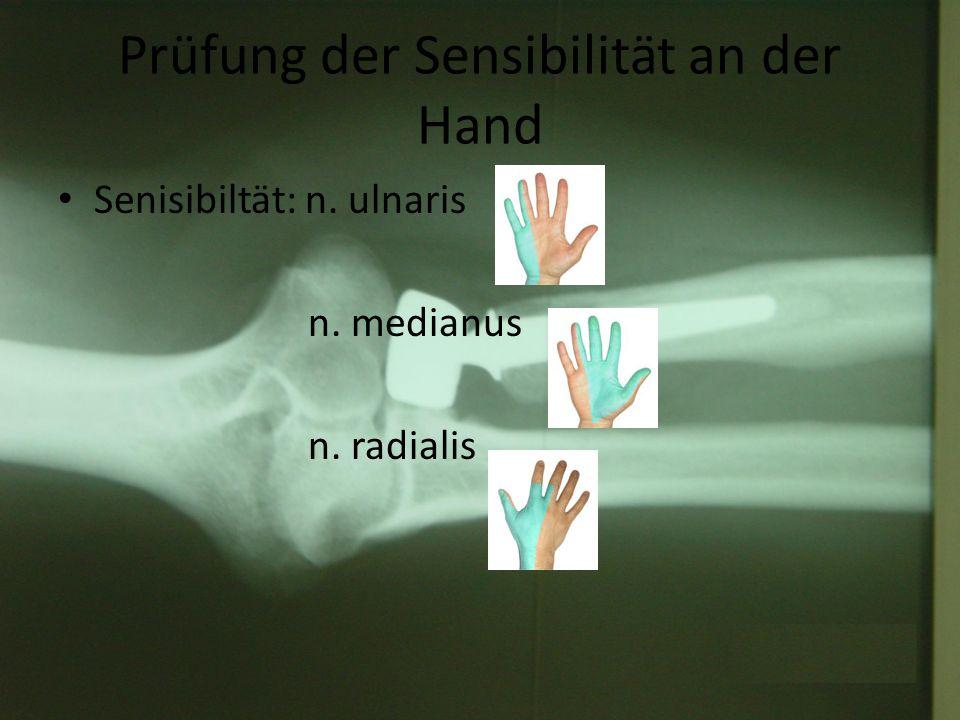 Prüfung der Sensibilität an der Hand