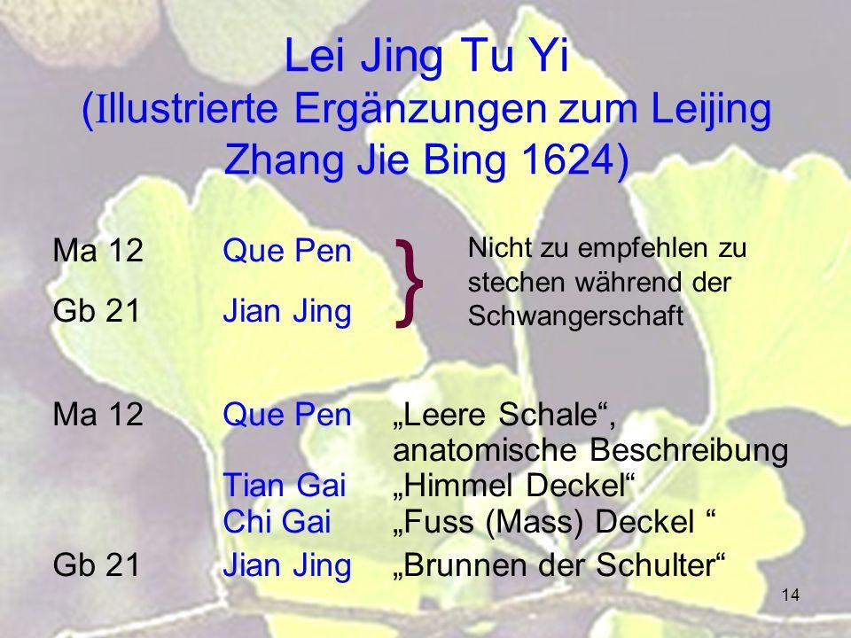 Lei Jing Tu Yi (Illustrierte Ergänzungen zum Leijing Zhang Jie Bing 1624)