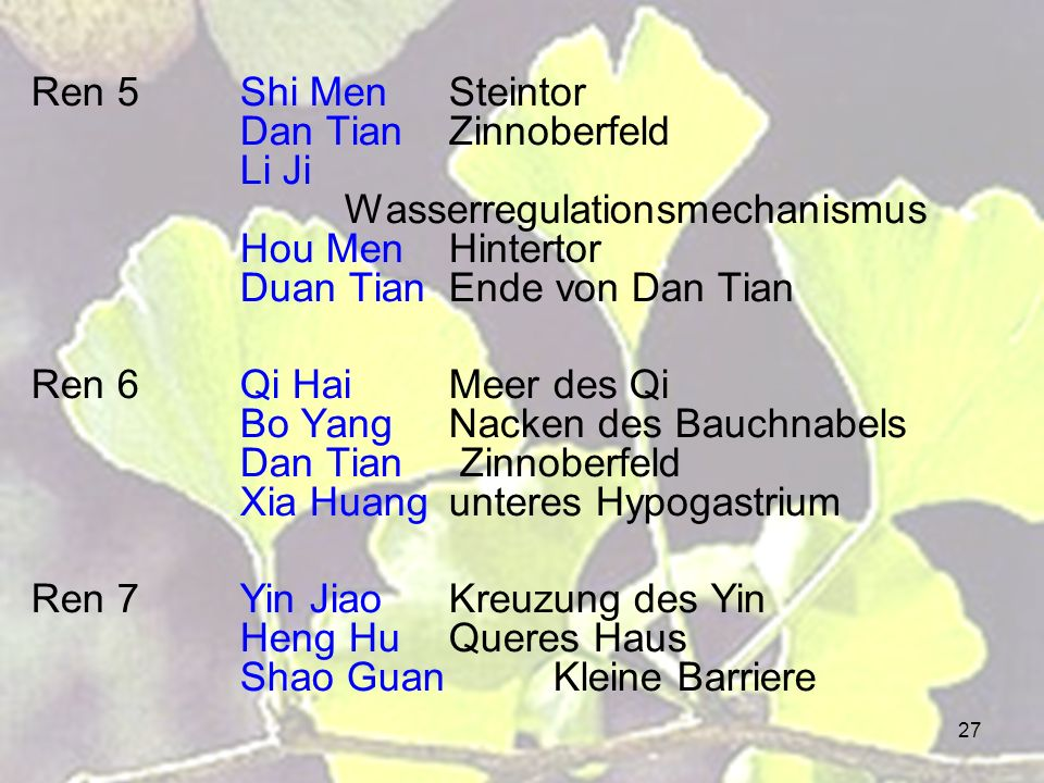 Ren 5. Shi Men. Steintor. Dan Tian. Zinnoberfeld. Li Ji