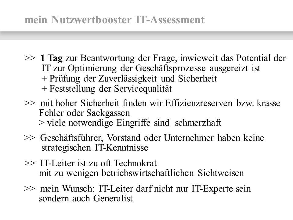 mein Nutzwertbooster IT-Assessment