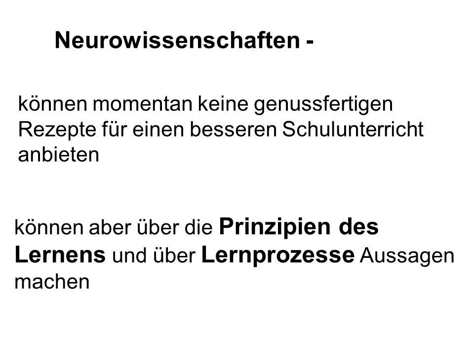 Neurowissenschaften -