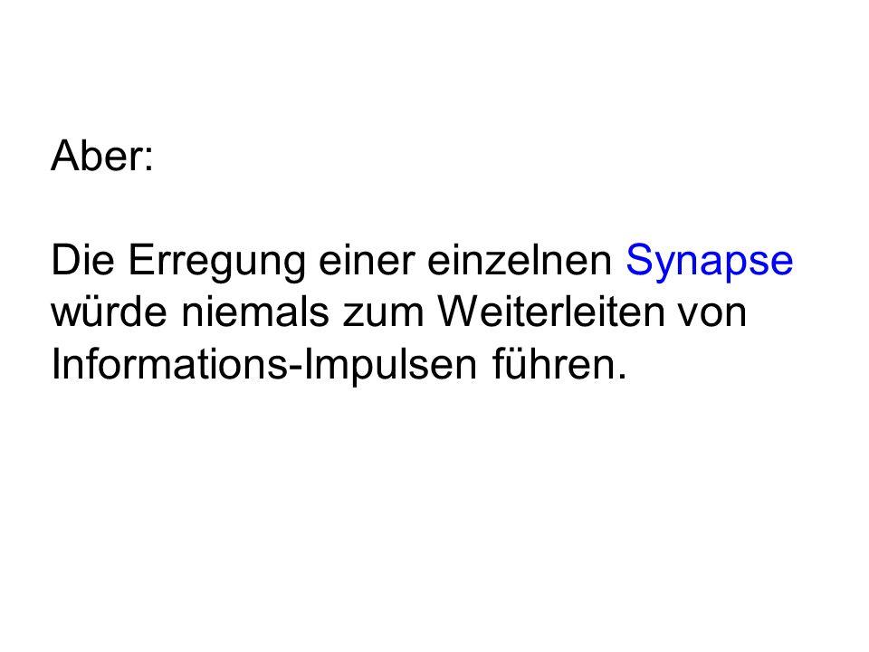 Aber: Die Erregung einer einzelnen Synapse würde niemals zum Weiterleiten von Informations-Impulsen führen.