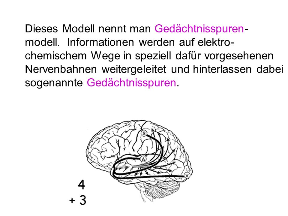 Dieses Modell nennt man Gedächtnisspuren-modell