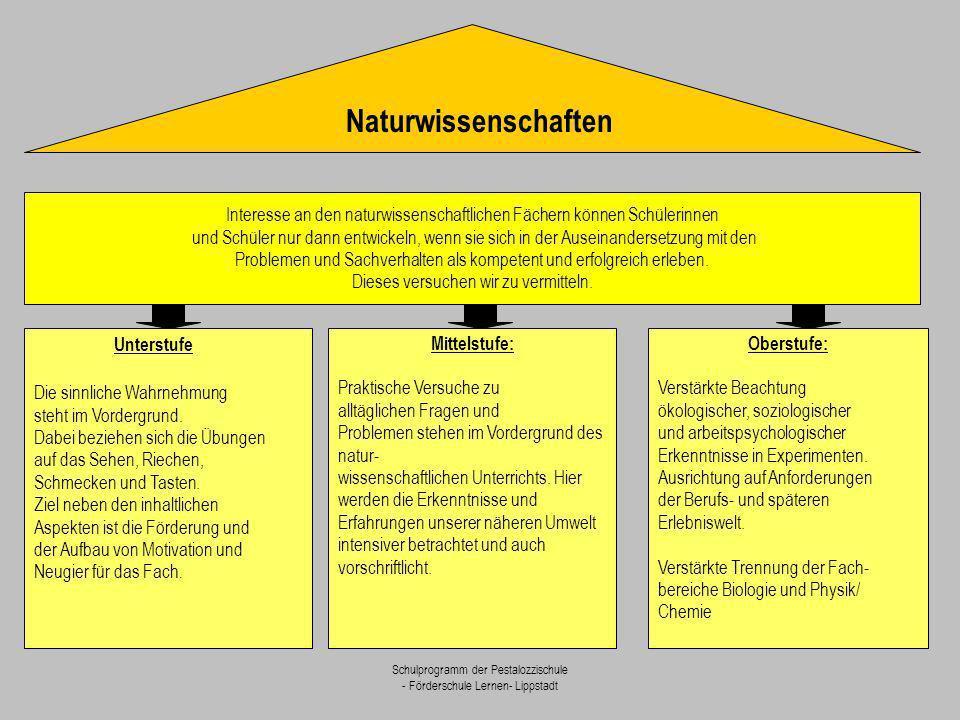 Naturwissenschaften Interesse an den naturwissenschaftlichen Fächern können Schülerinnen.
