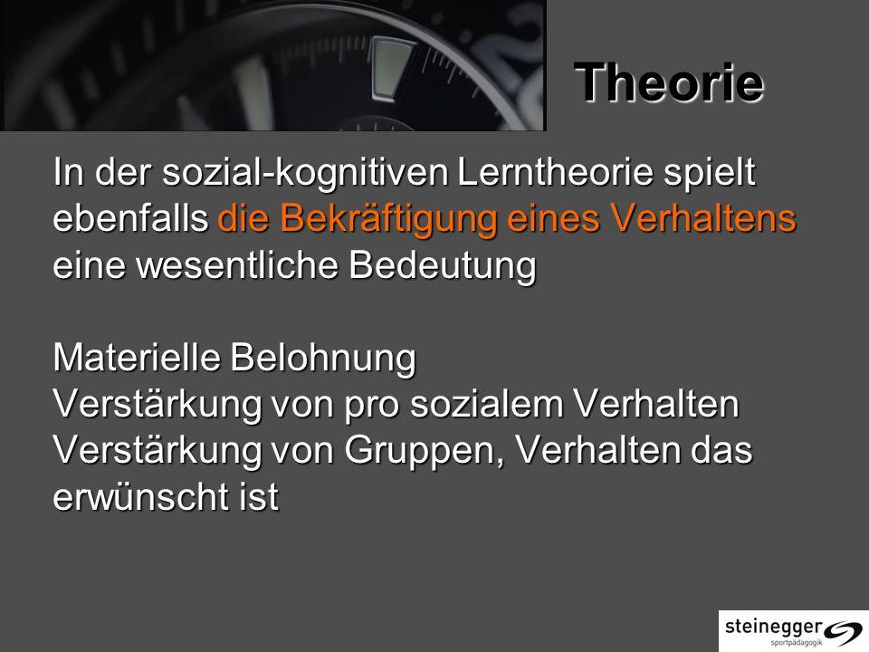 Theorie In der sozial-kognitiven Lerntheorie spielt