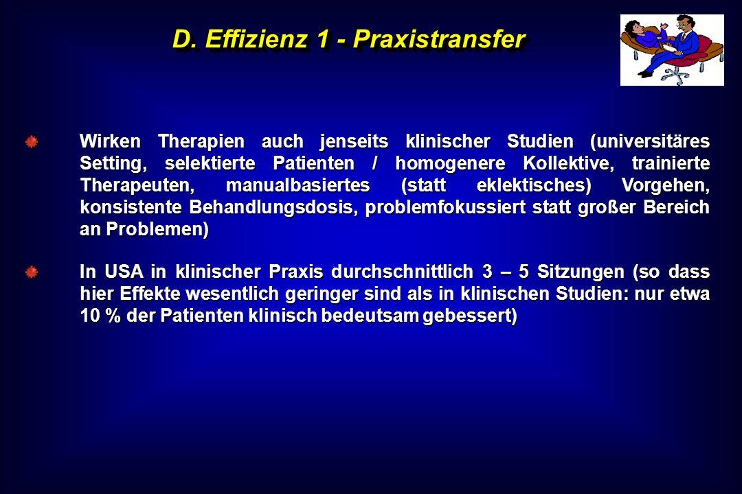 D. Effizienz 1 - Praxistransfer