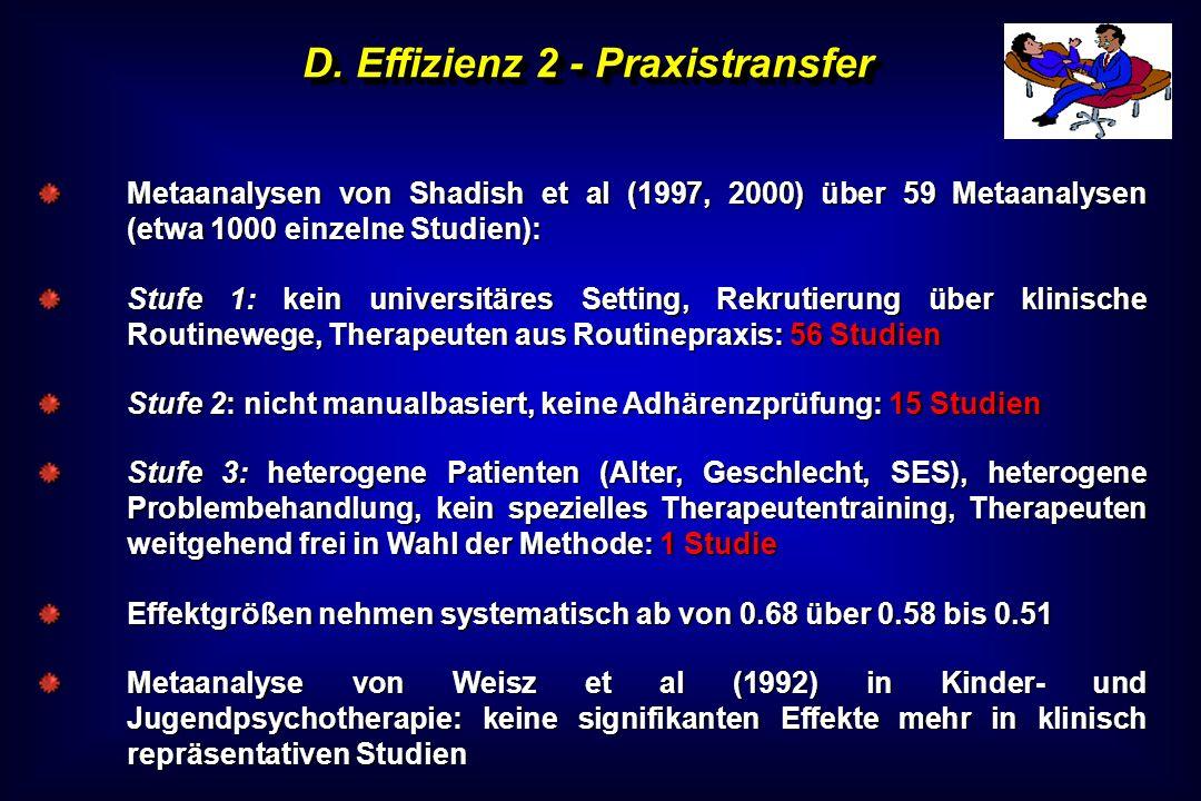 D. Effizienz 2 - Praxistransfer