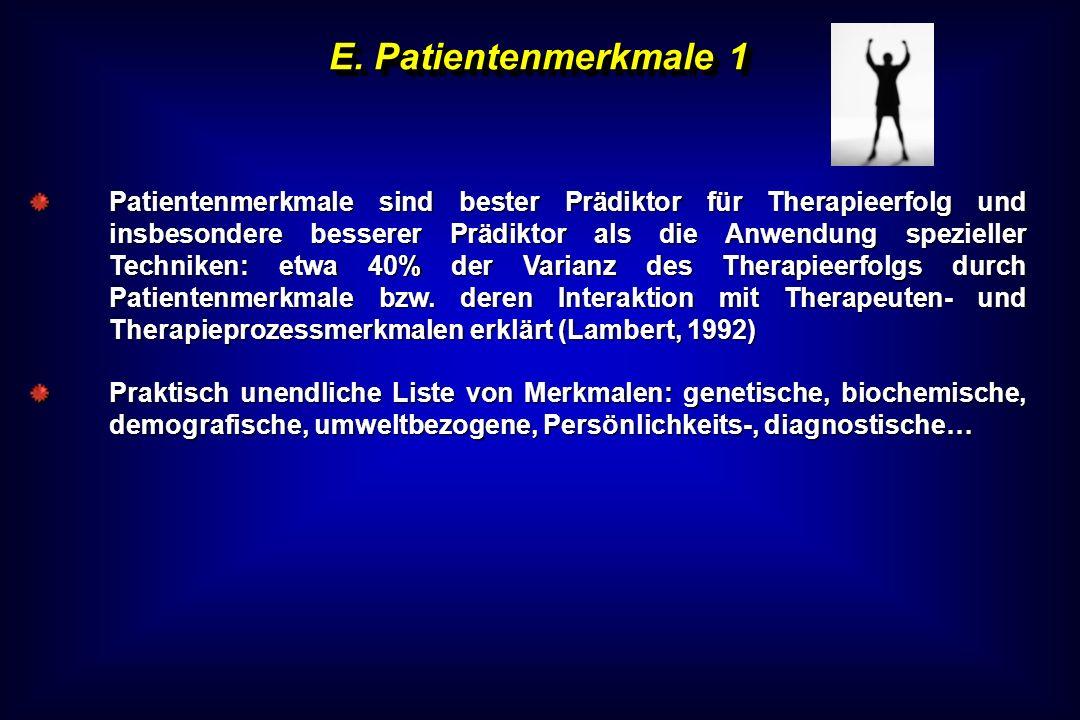 E. Patientenmerkmale 1