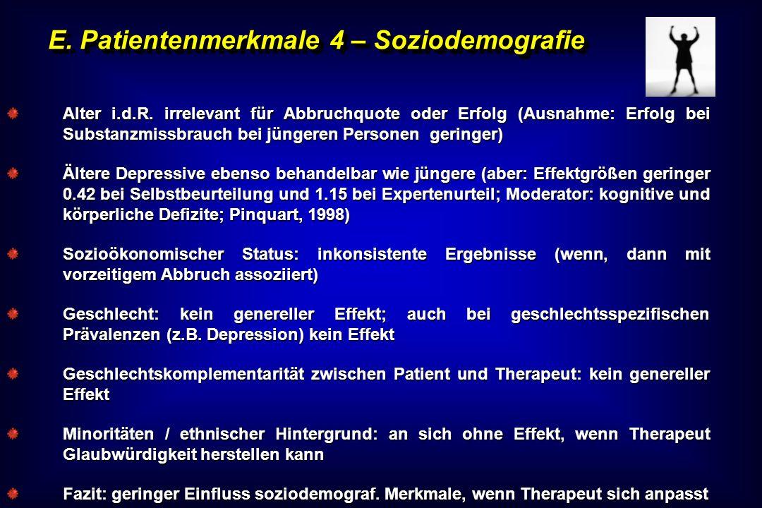 E. Patientenmerkmale 4 – Soziodemografie
