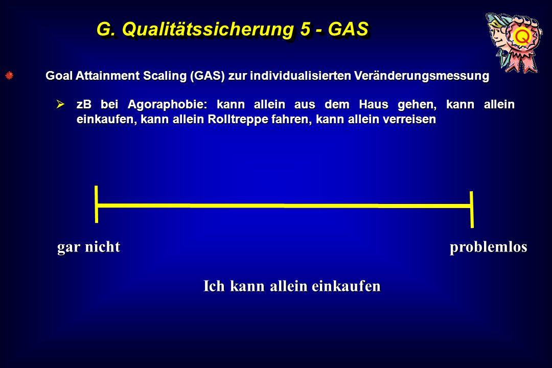 G. Qualitätssicherung 5 - GAS Ich kann allein einkaufen