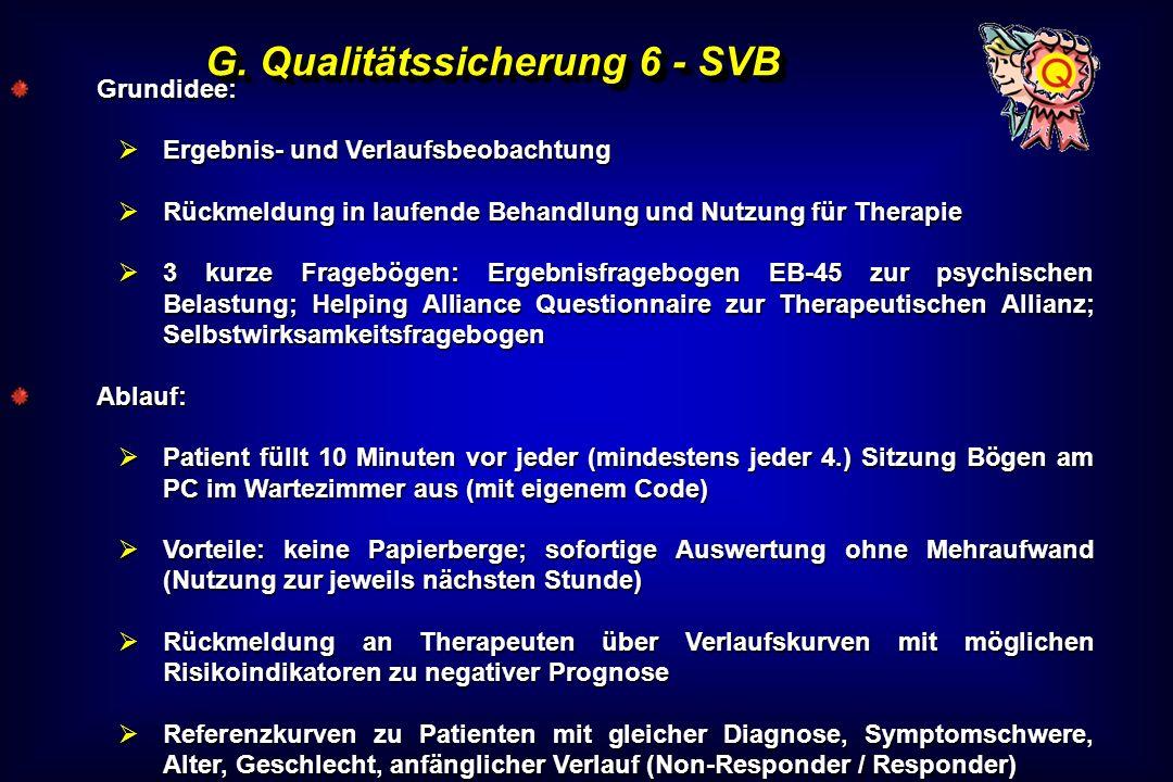 G. Qualitätssicherung 6 - SVB