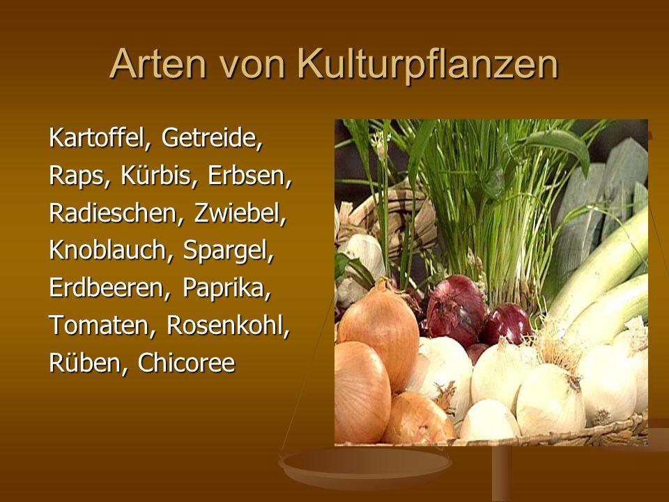 Arten von Kulturpflanzen