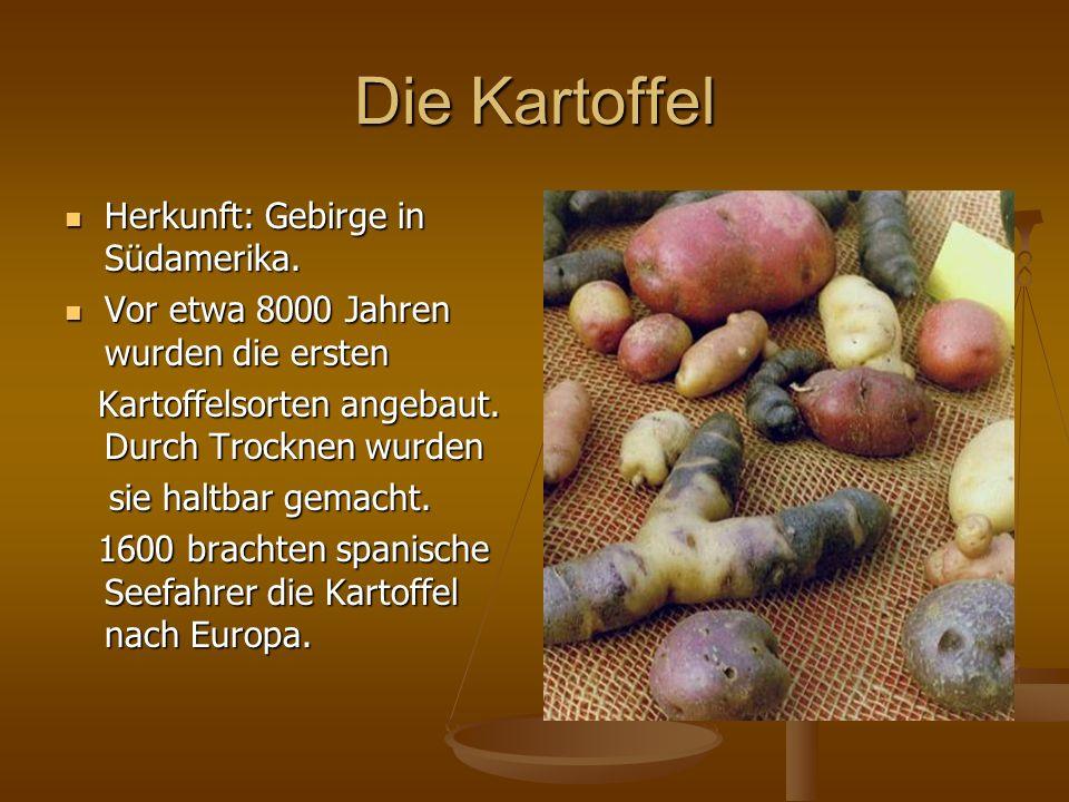 Die Kartoffel Herkunft: Gebirge in Südamerika.