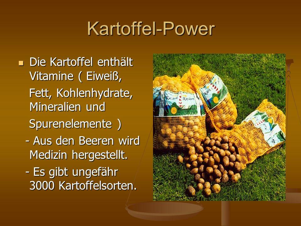 Kartoffel-Power Die Kartoffel enthält Vitamine ( Eiweiß,
