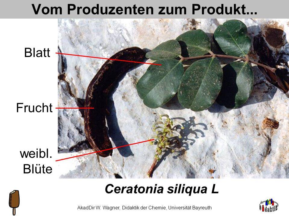 Vom Produzenten zum Produkt...