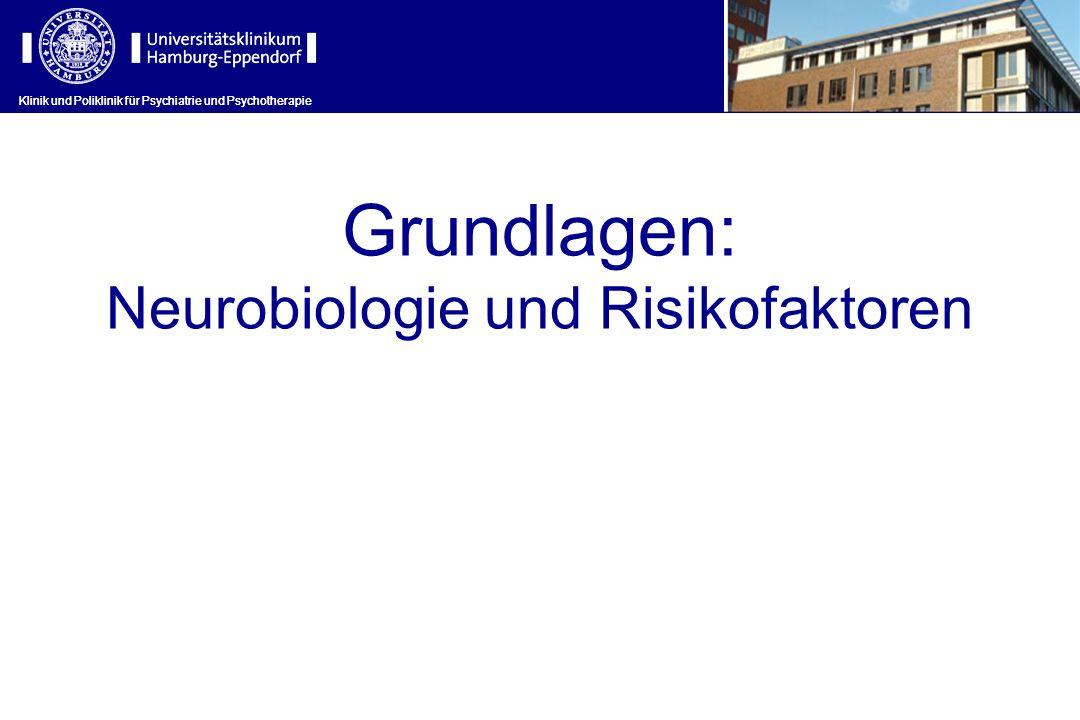 Neurobiologie und Risikofaktoren