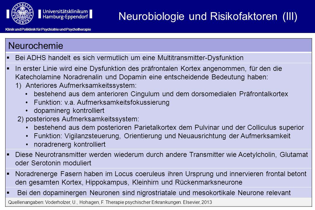 Neurobiologie und Risikofaktoren (III)