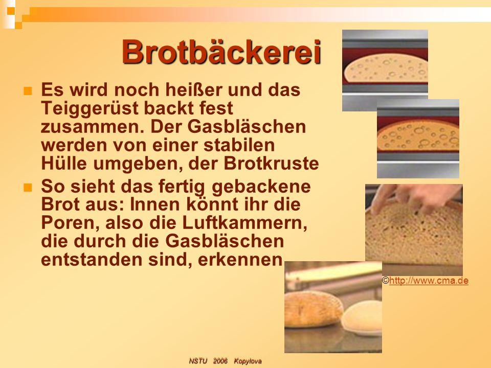 Brotbäckerei Es wird noch heißer und das Teiggerüst backt fest zusammen. Der Gasbläschen werden von einer stabilen Hülle umgeben, der Brotkruste.