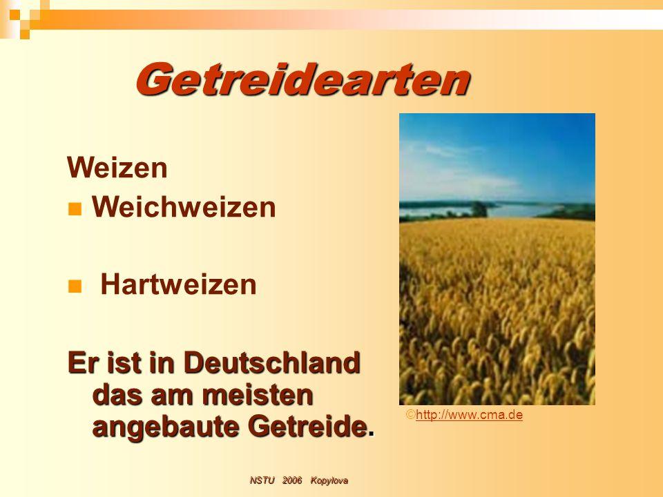 Getreidearten Weizen Weichweizen Hartweizen