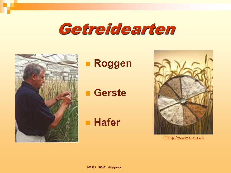 Getreidearten Roggen Gerste Hafer ©http://www.cma.de