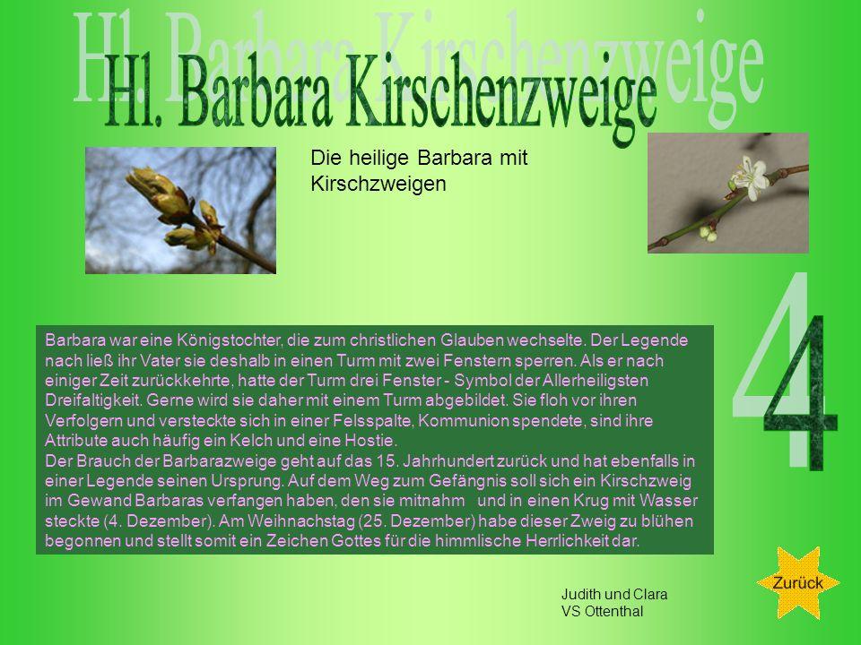 Hl. Barbara Kirschenzweige