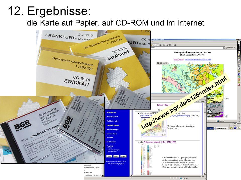 12. Ergebnisse: die Karte auf Papier, auf CD-ROM und im Internet