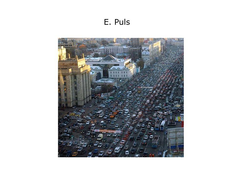 E. Puls